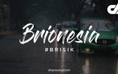 BRIONESIA